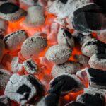 Barbecue: quel modèle choisir?