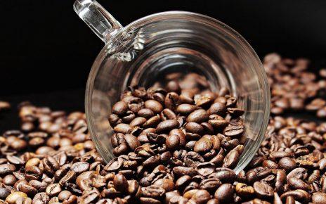 Café en grain, comment le choisir ?